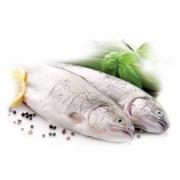Chladené ryby
