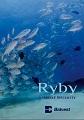 Katalóg Ryby a morské špeciality